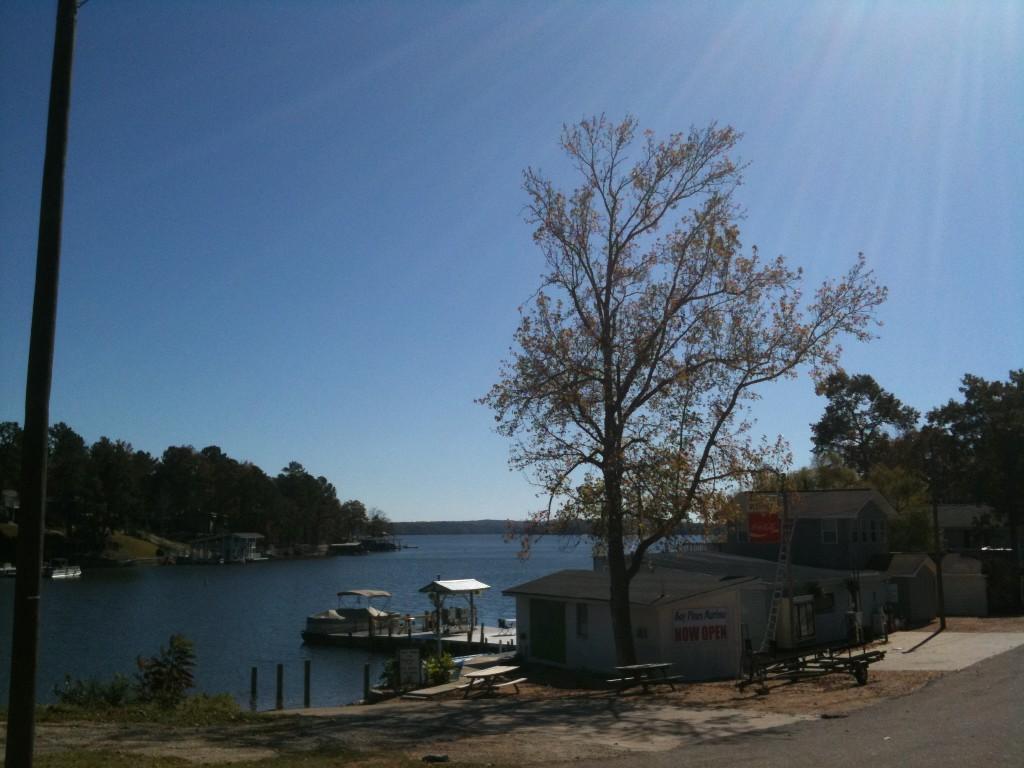 bay pines marina lake martin
