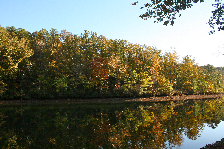 lake martin alabama reflection leaf color