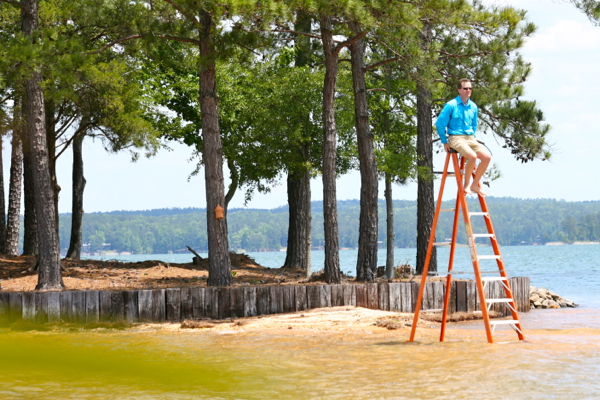 Pic from a ladder Lake Martin Vocie Realty