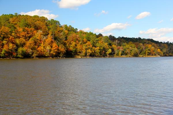 Fall at Lake Martin 2013 - 12