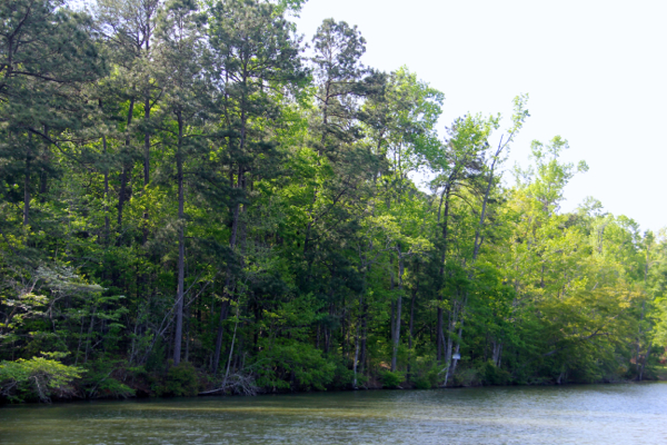 Lot 4 Phase 2 Smith Mountain Drive Lake Martin