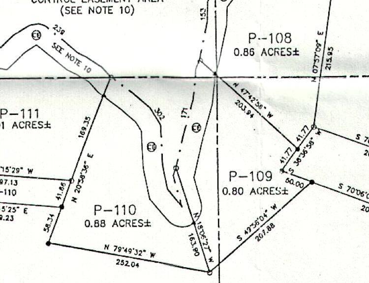 Lot P-110 Plat Map Pace's Peninsula