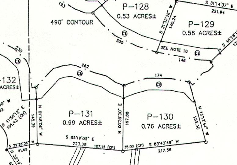 Lot P-131 Plat Map Pace's Peninsula
