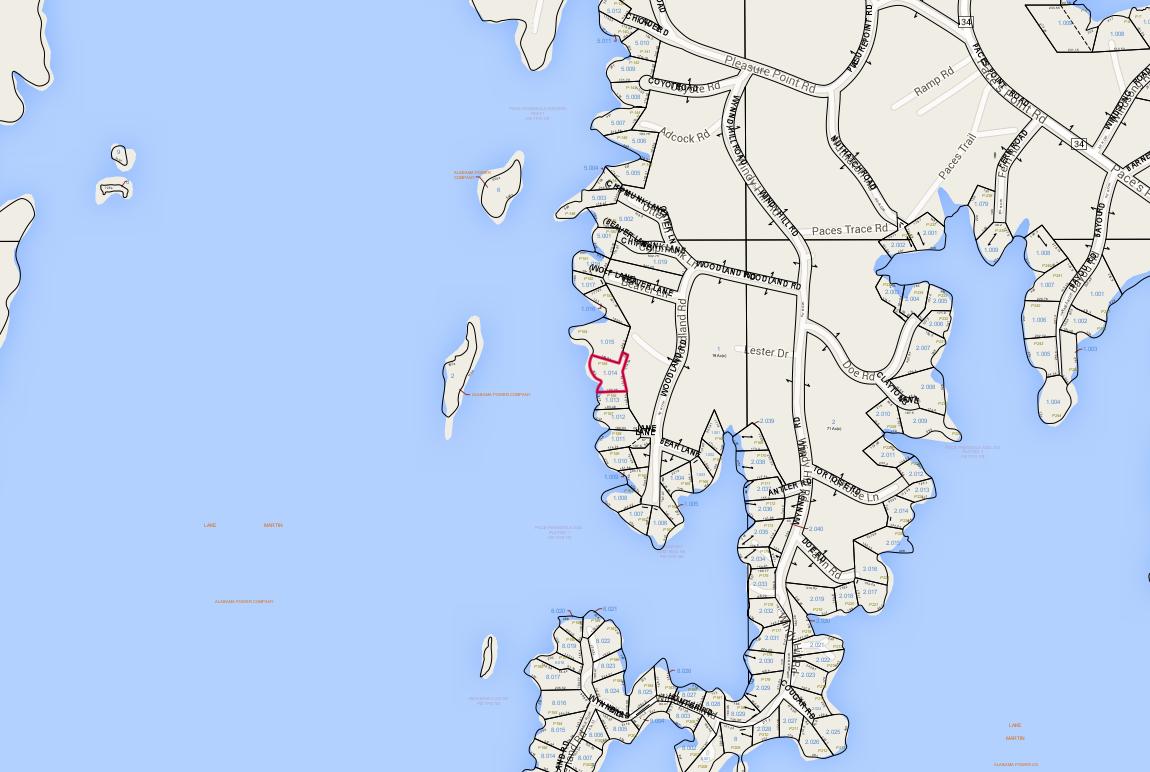 Lot P-155 Tax Map Pace's Peninsula
