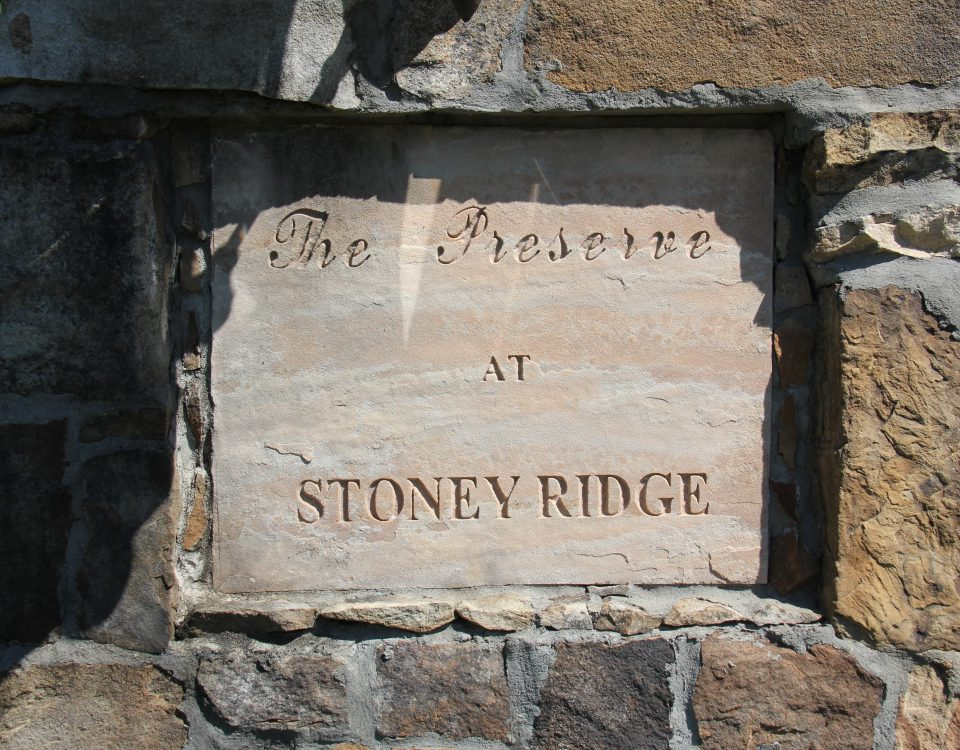 The Preserve at Stoney Ridge